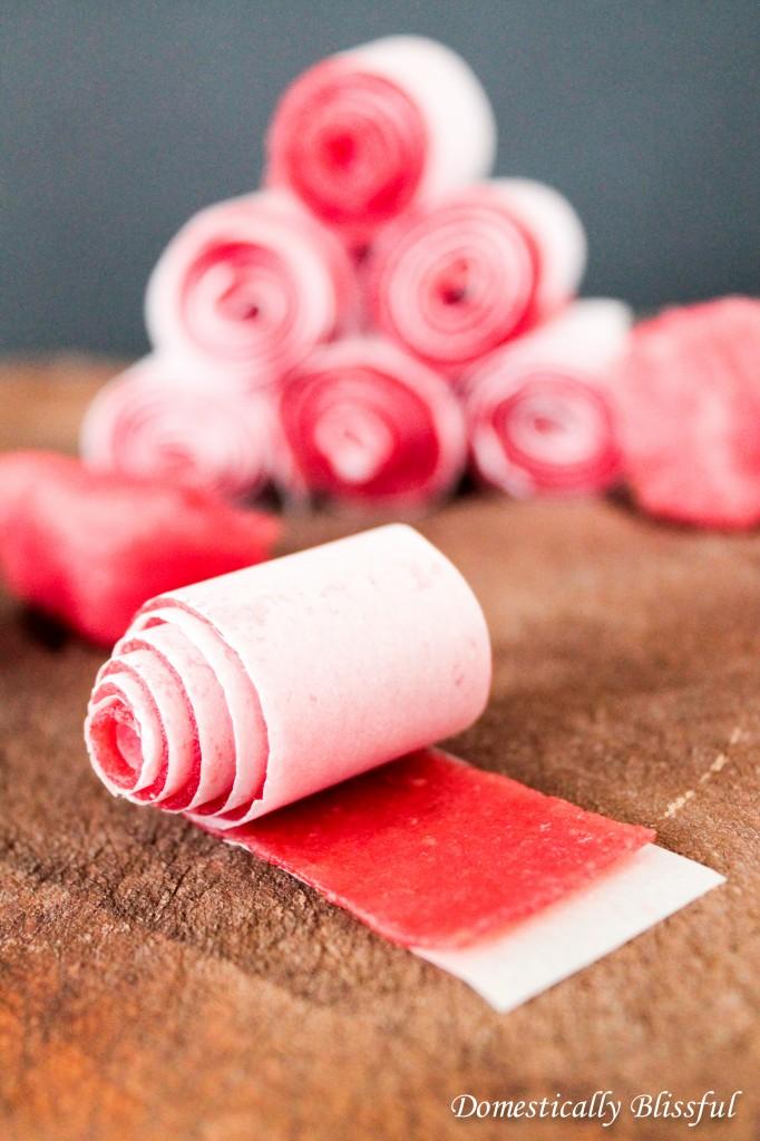 Watermelon Roll-Ups -