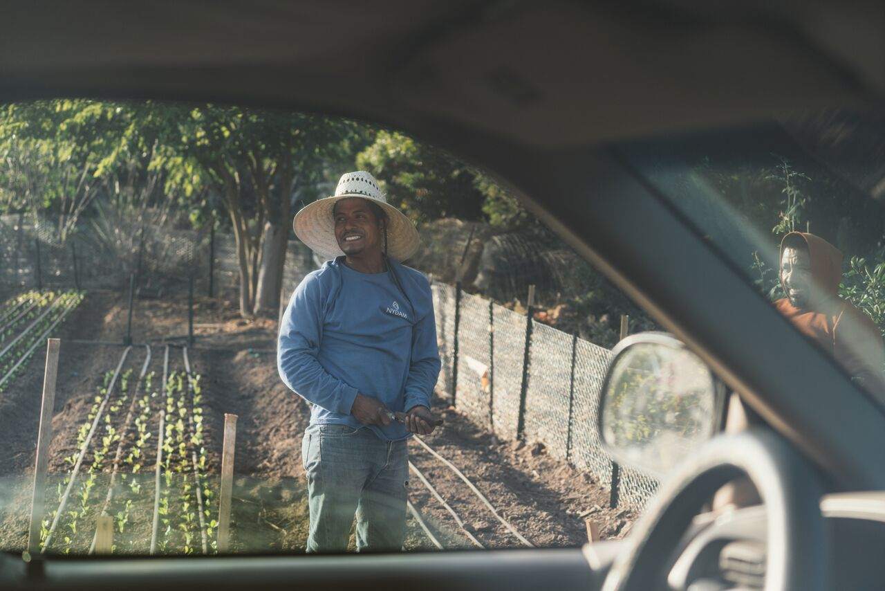 Jose Cardiel is the back bone of the Farm Cart Organics market garden at Pacifica Graduate Institute. Aside from being a happy, incredible dude, he is a plant whisperer. Without his ceaseless labor, great spirit, and love of his work, the crops would fail.