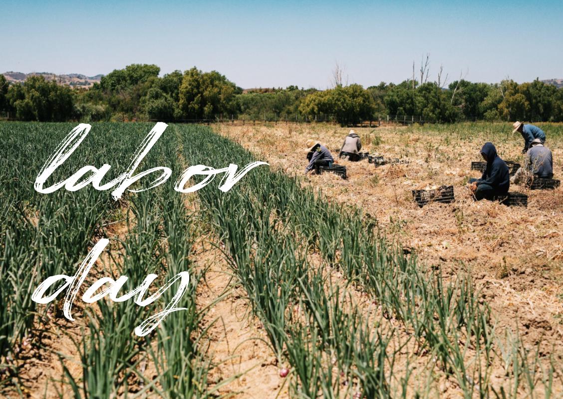 Labor Day Blog -