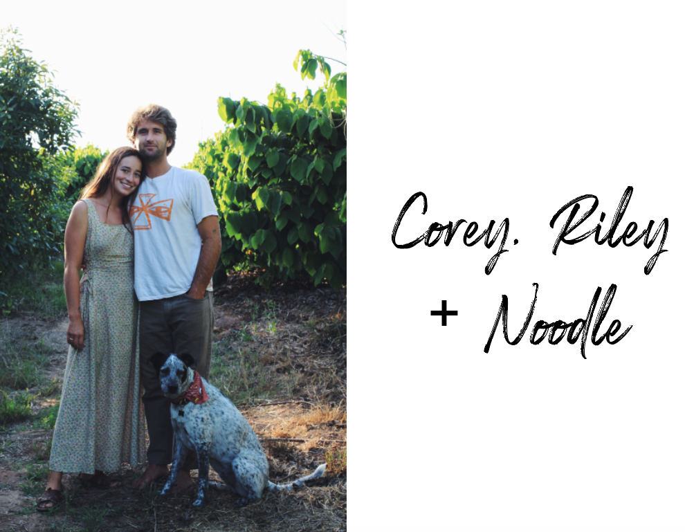 Corey, Riley, & Noodle -