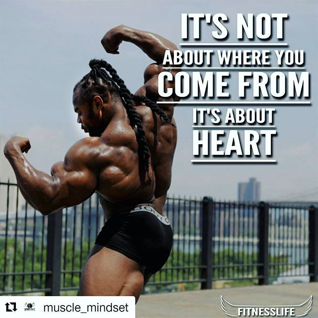 #Repost @muscle_mindset  You have to have a heart for what you're doing!👌Follow 👉 @fitnesslife_quotes for more. . . . . . . #deadlift #musclemindset #aesthetics #bicepsday #trainhard #gainz #results #fitmodels #teamfitt #GoGetIt #Fitnessfriday #Fitness #gevitta #burnbygevitta #FitnessMotivation #FitLife #GymMotivation #trevorjosephfisher #NoPainNoGain #Squats #Iwill #Instarunners #Betterforit #Alwaysinbeta #Fitspo