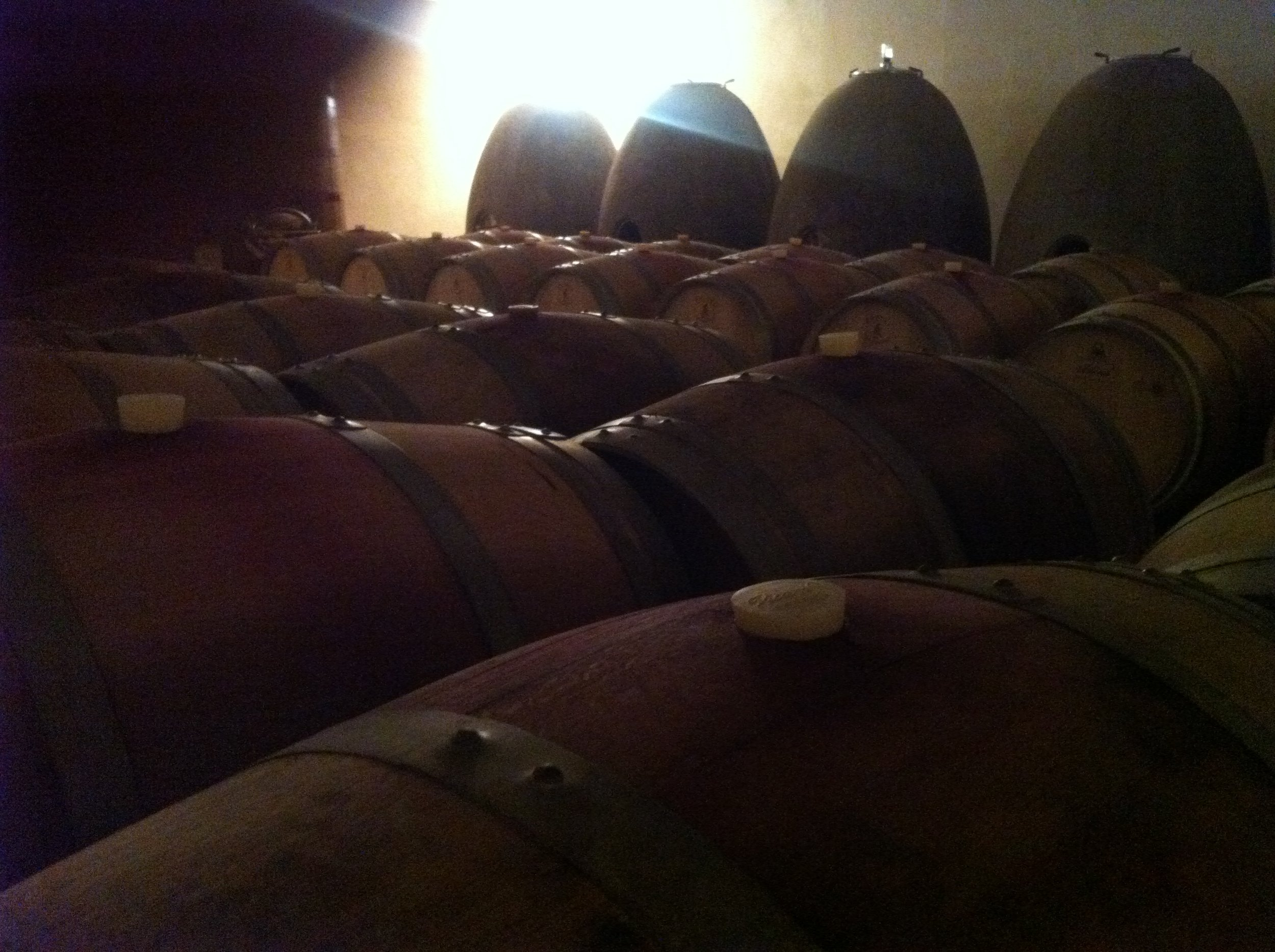 Maris Barrel Cellar (2) - Jacques Herviou.JPG