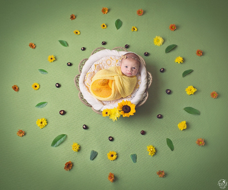 newborn-photos-nature-mandalas-10.jpg