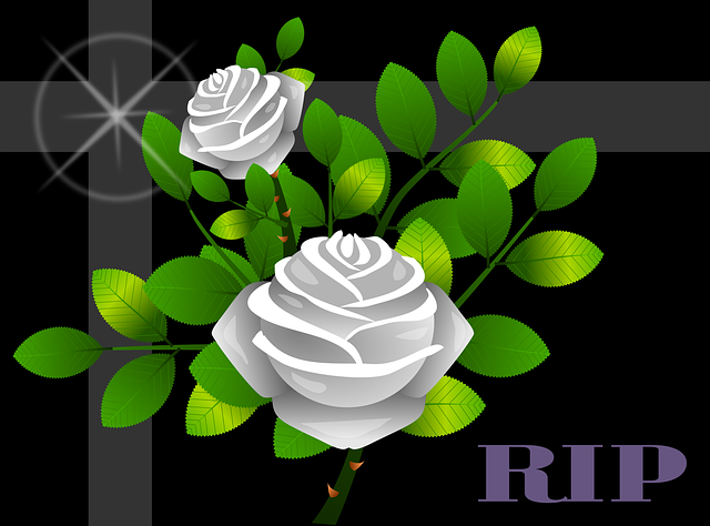 roses-1990831_640.png