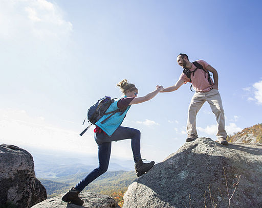 512px-Helping_Hand_on_Old_Rag_(22310055090).jpg