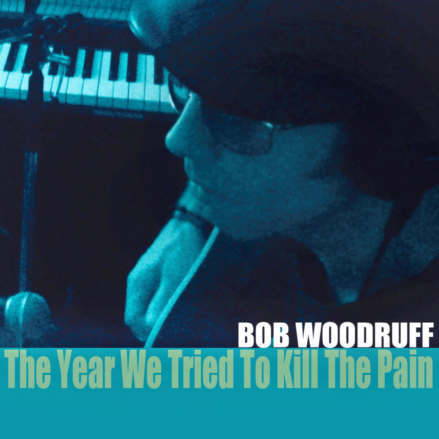 Bob Woodruff  The Year We Tried To Kill The Pain COVER L A C.jpg