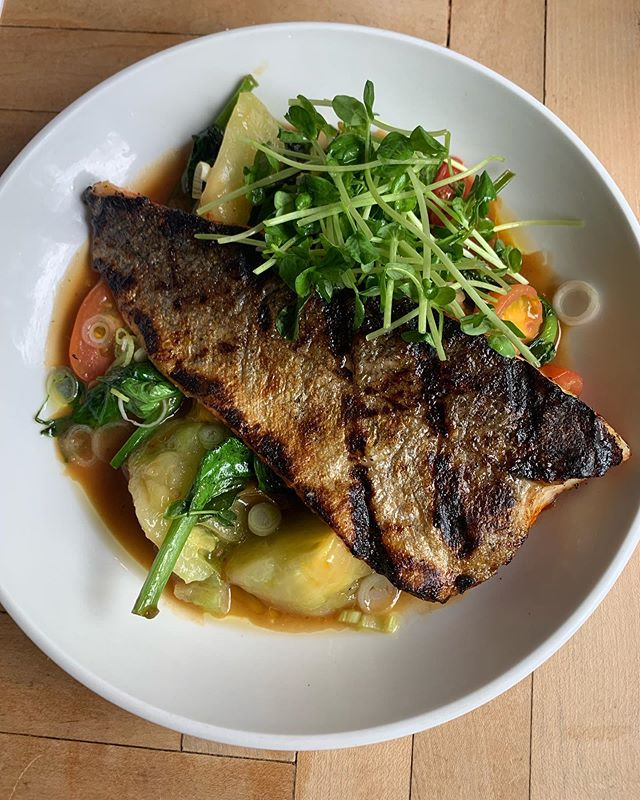 New look on the Grilled Harissa Trout w/ heirloom tomatoes 🍅, pea leaves🌱in a dashi broth & koji 🎣🍽 cruise thru!