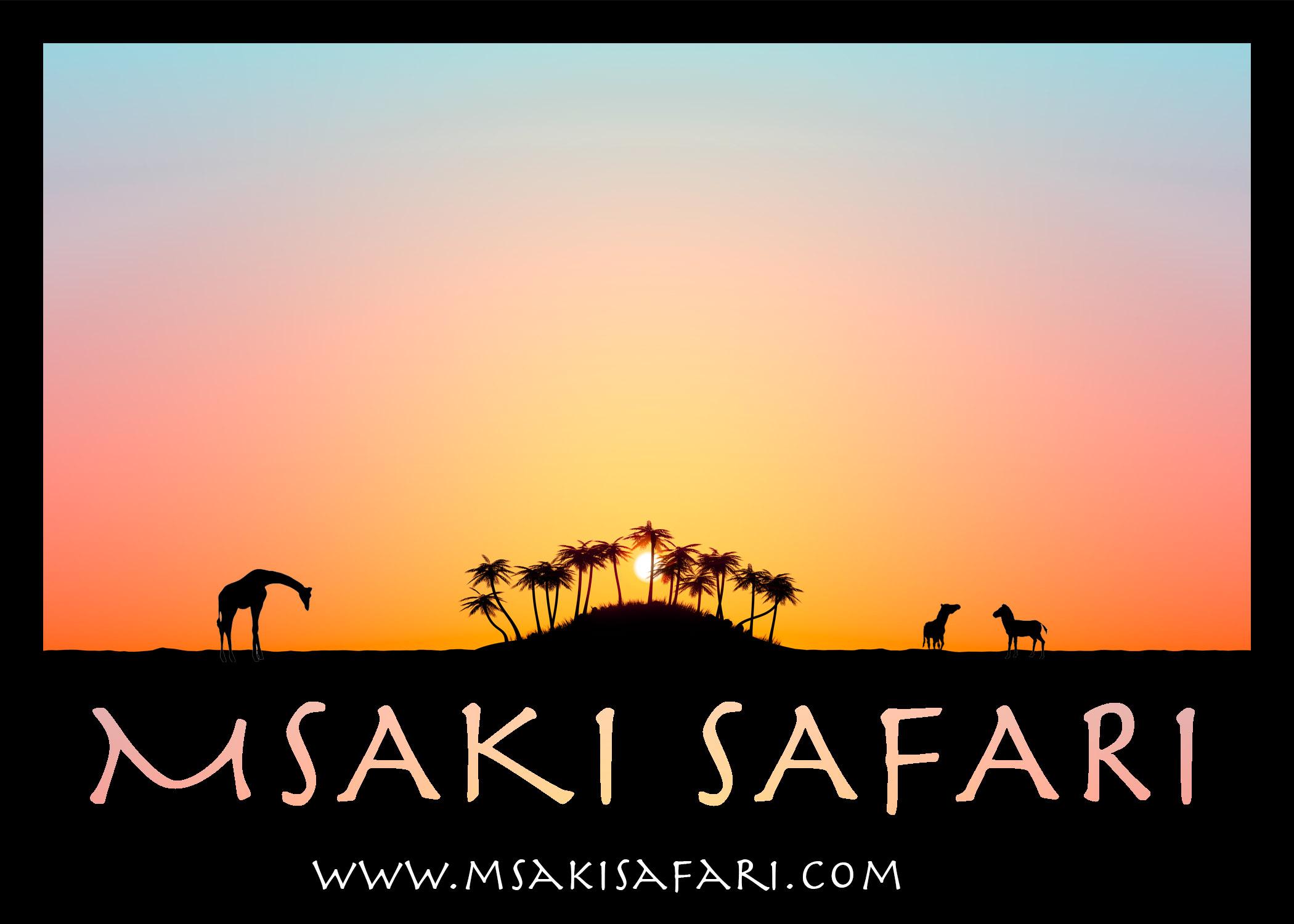 safariLogo6.jpg