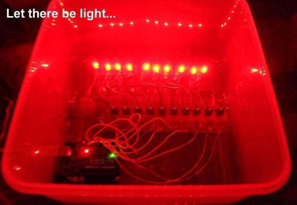 housed lit.jpg
