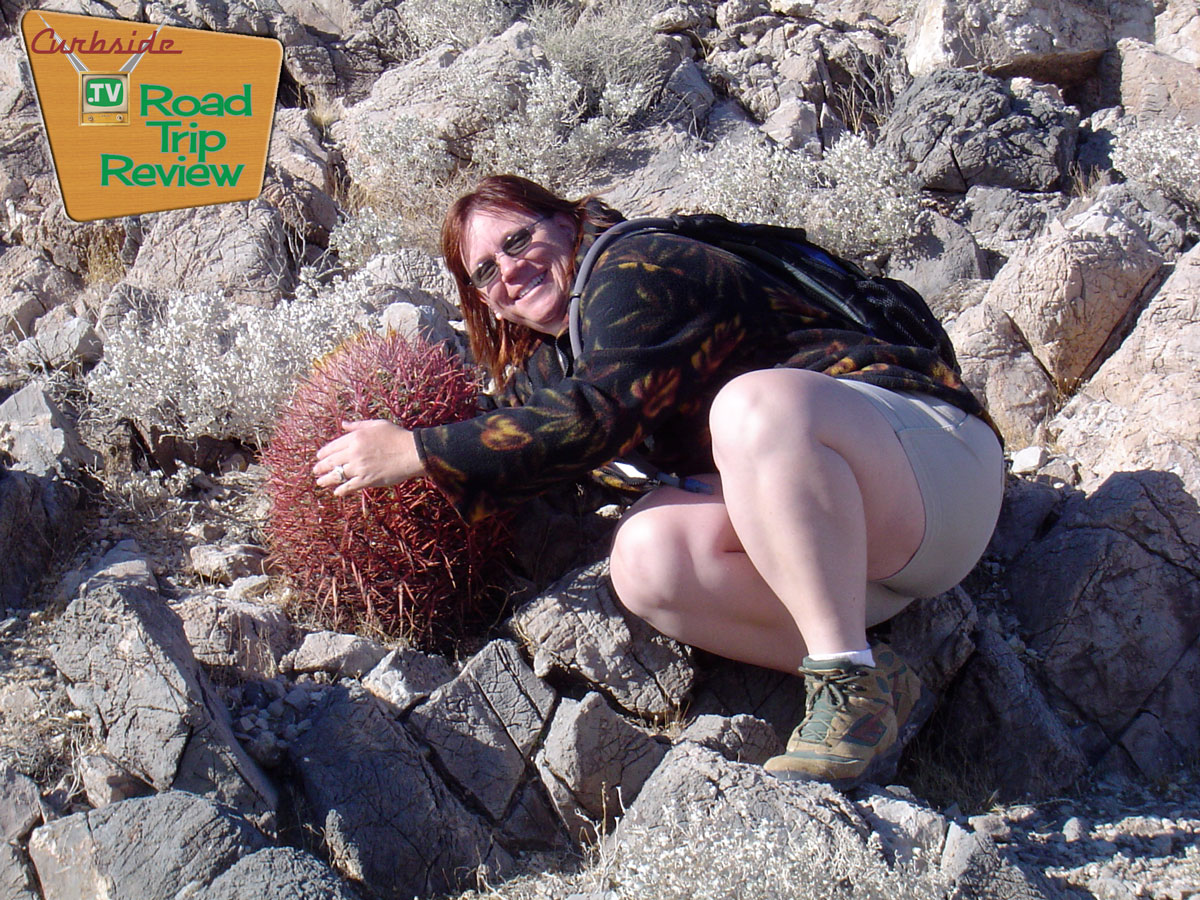Zzyzx-Loving-Cactus.jpg