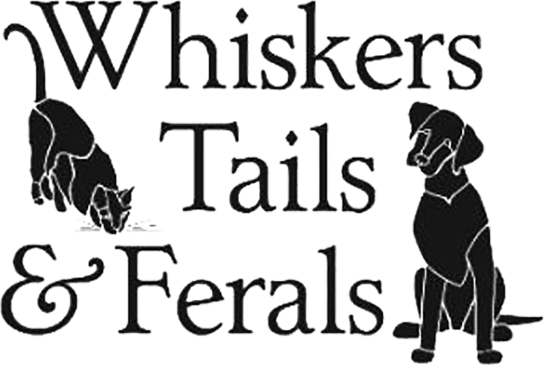 Whiskers-Tails.png