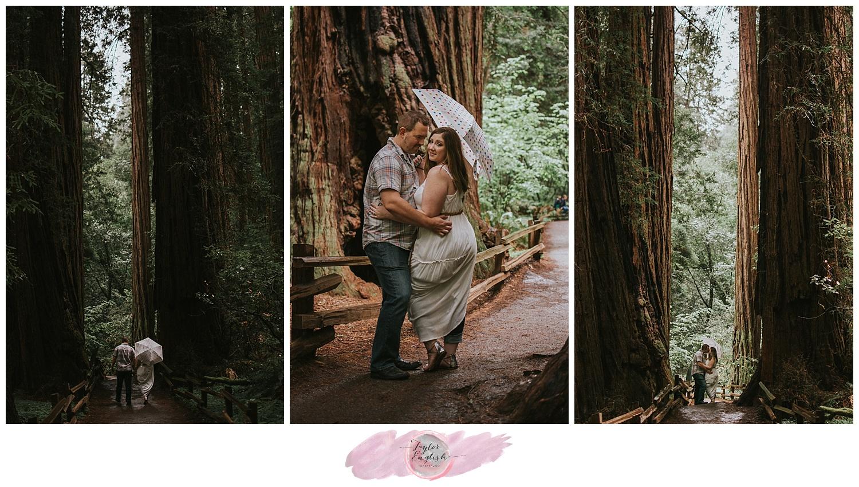 tephoto_muirwoods_engagement9