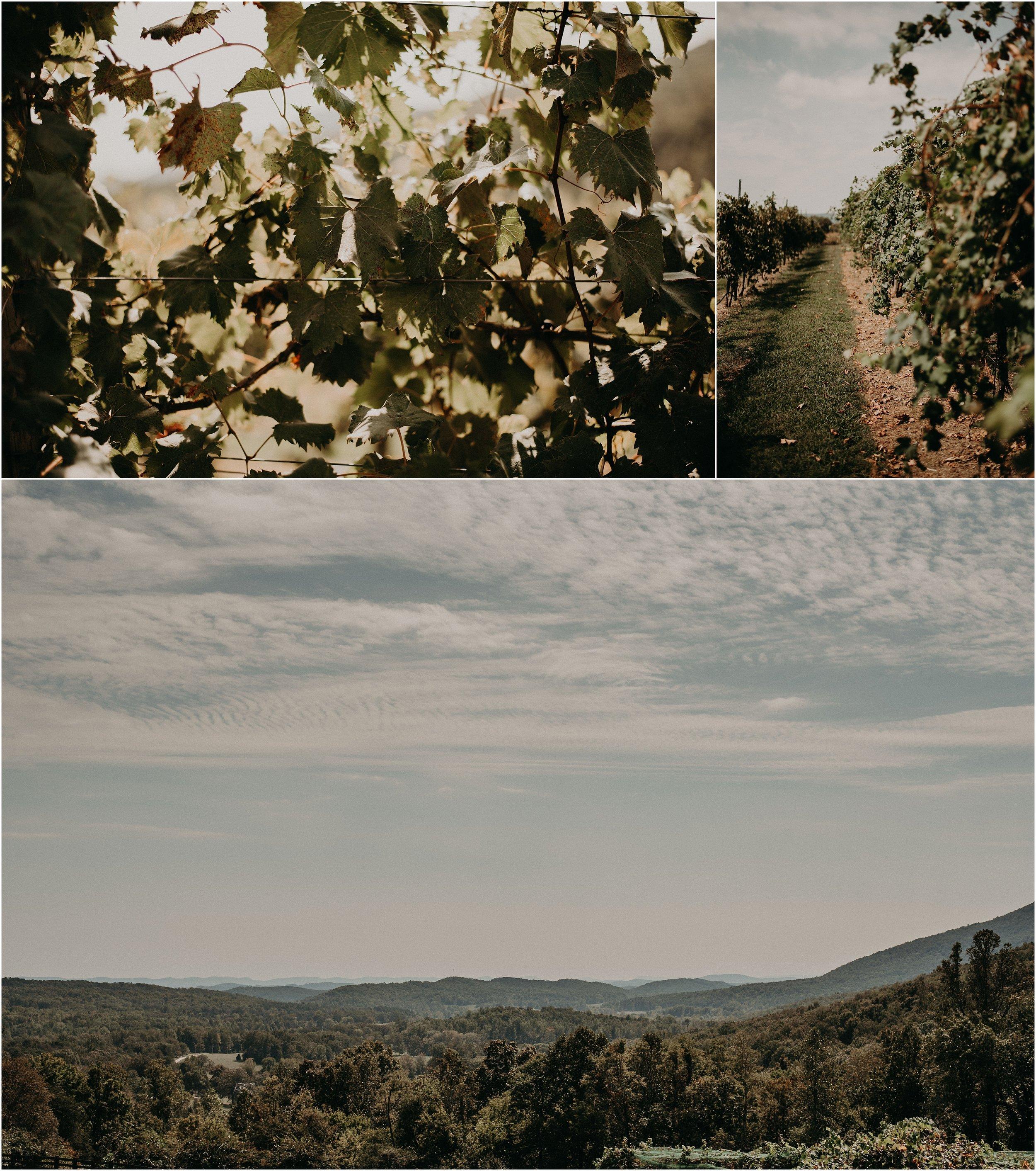 Vineyard Wedding at Debarge Winery in Lafayette, Georgia