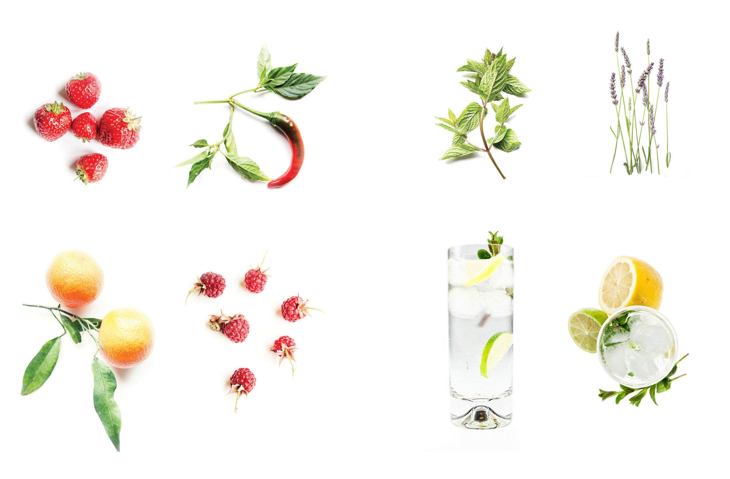 Ana's own professional photography features in the Gordon Castle design range, notably the unique gin bottle design showing herbs collected from the Walled Garden. The look and feel of Gordon Castle's website, publicity material and online shop were also developed in line with the exclusive product range.