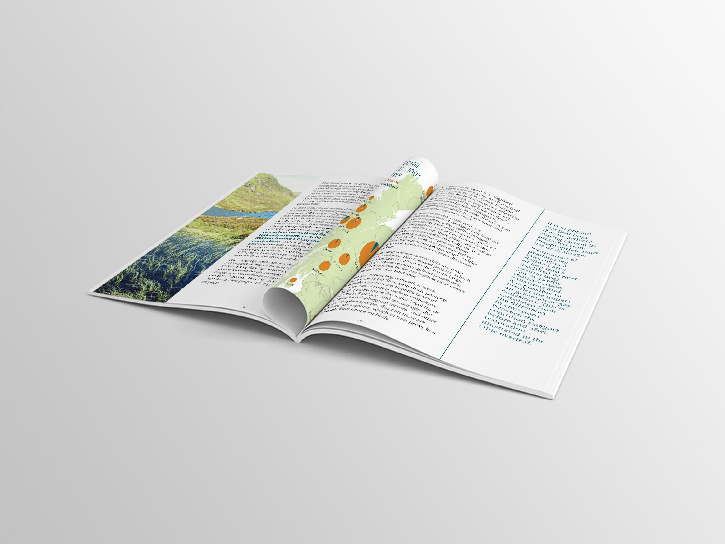 nts-publication-website19.jpg