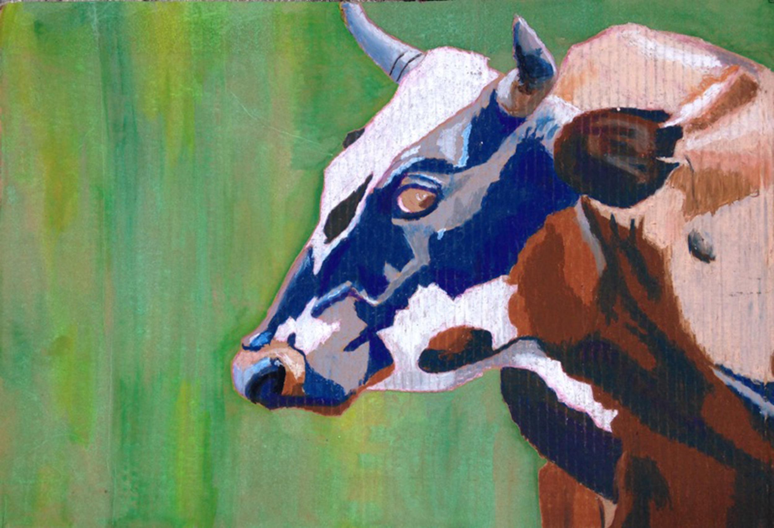 AP Cow.jpg