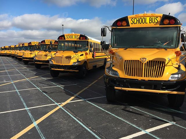 We love these freshly cleaned IC Buses all lined up and ready for there debut! 🚌☀️🎥#sofreshandsoclean #ducksinarow