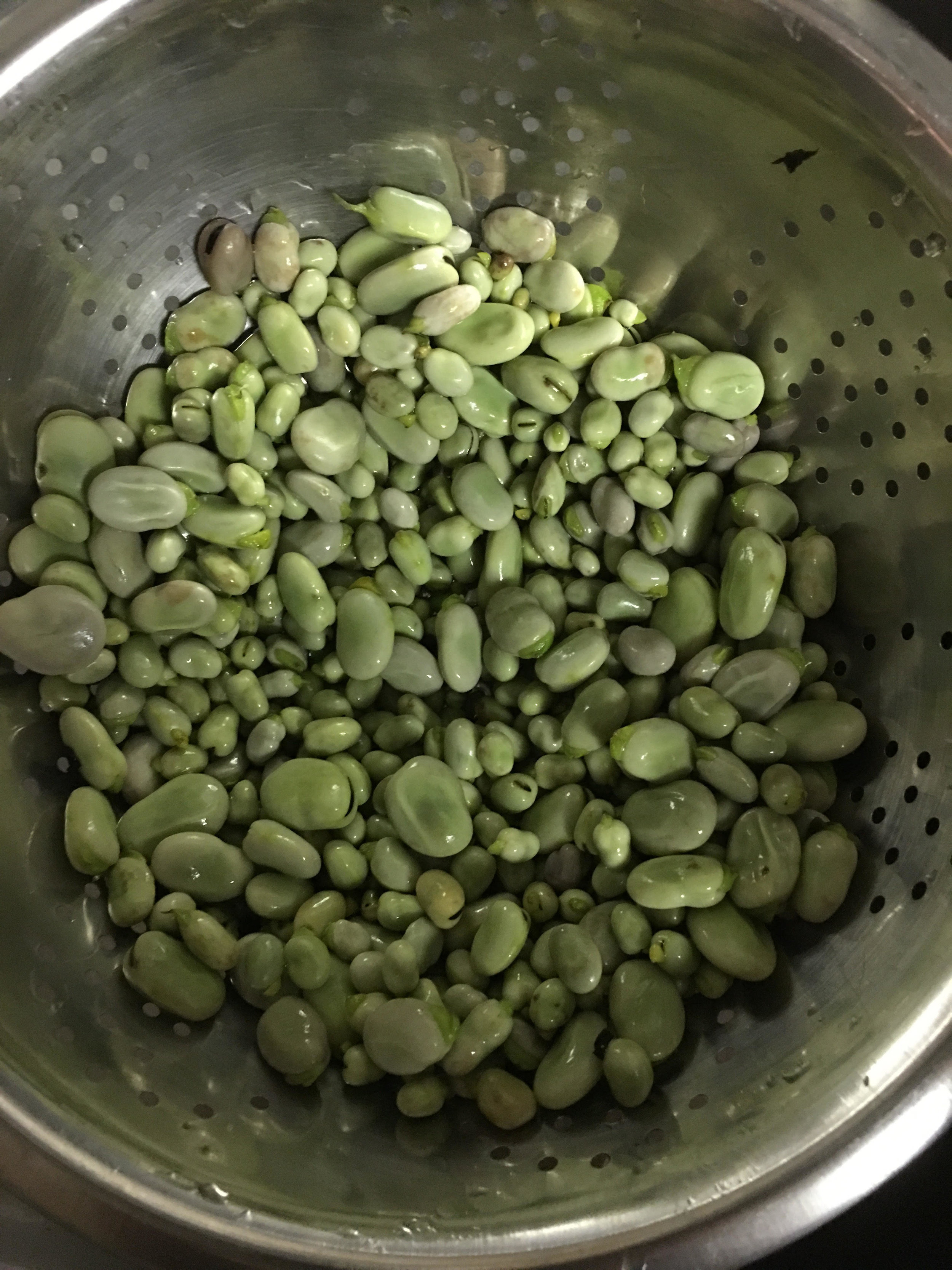 boiled fava and broad beans.jpg