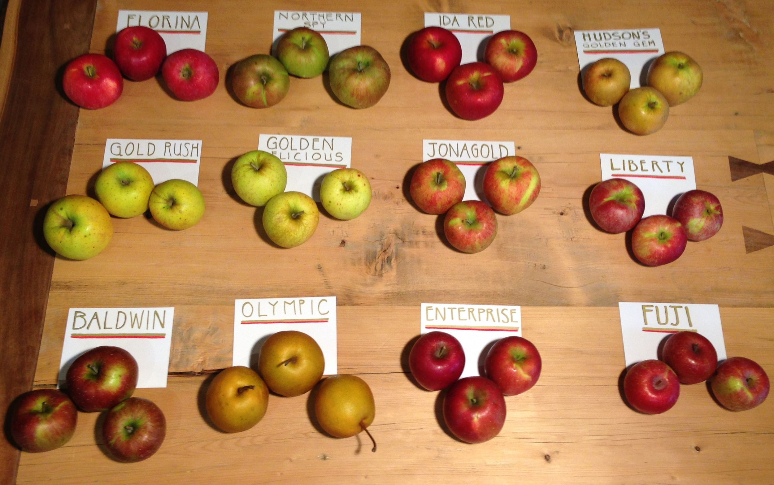 Organic Apples from Good Life and Hemlock Grove!