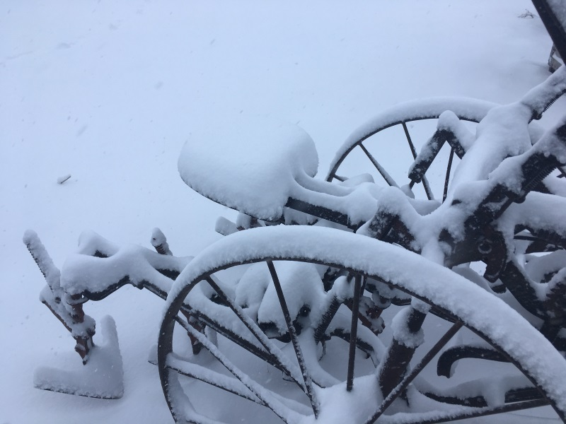 SNOW cultivator small.jpg