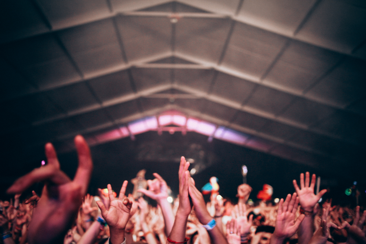 Nick-Johnson_Mr-Aesthetic_Photography_Bonnaroo-27.jpg