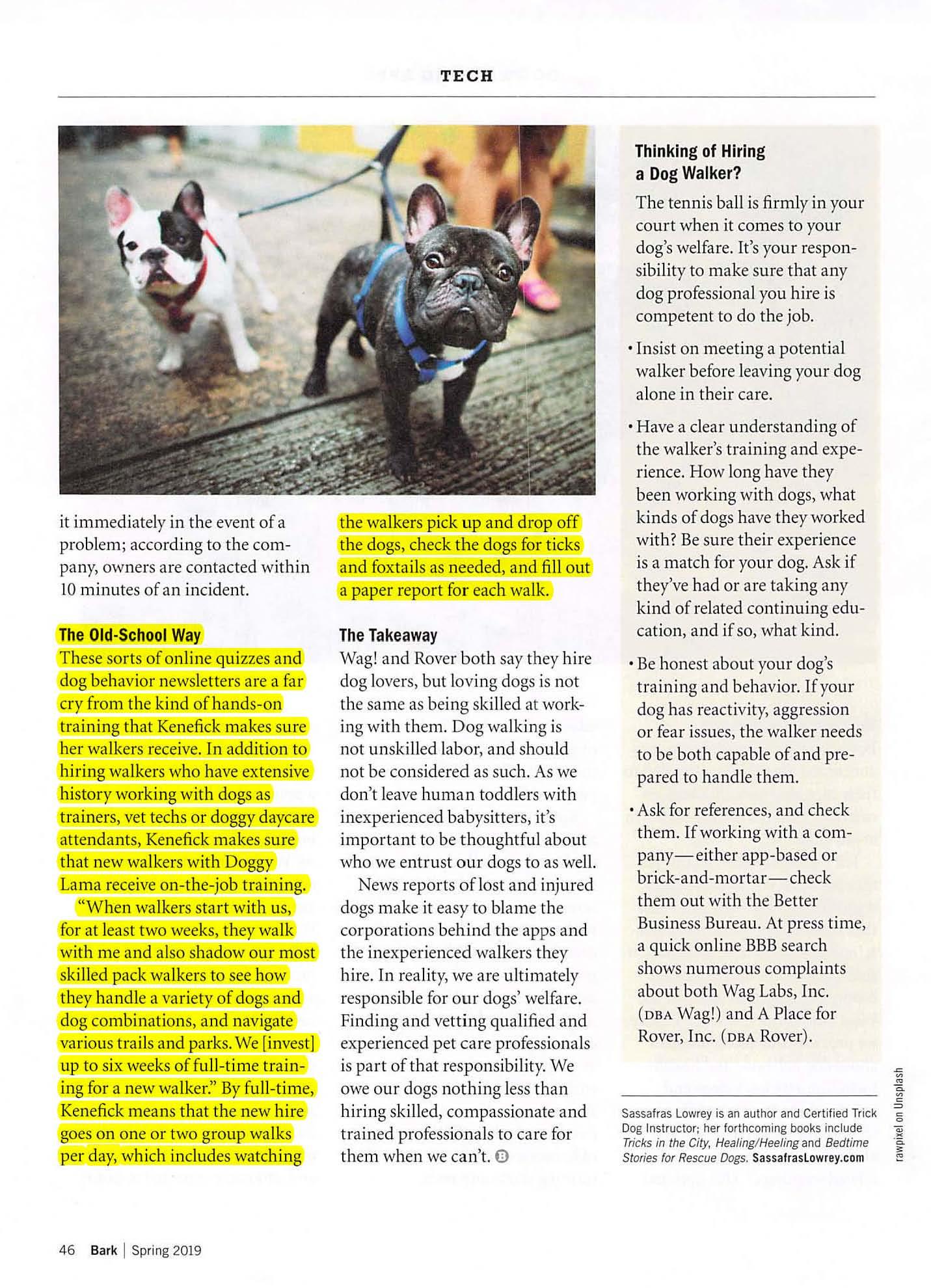 Bark Magazine — Doggy Lama Pet Care