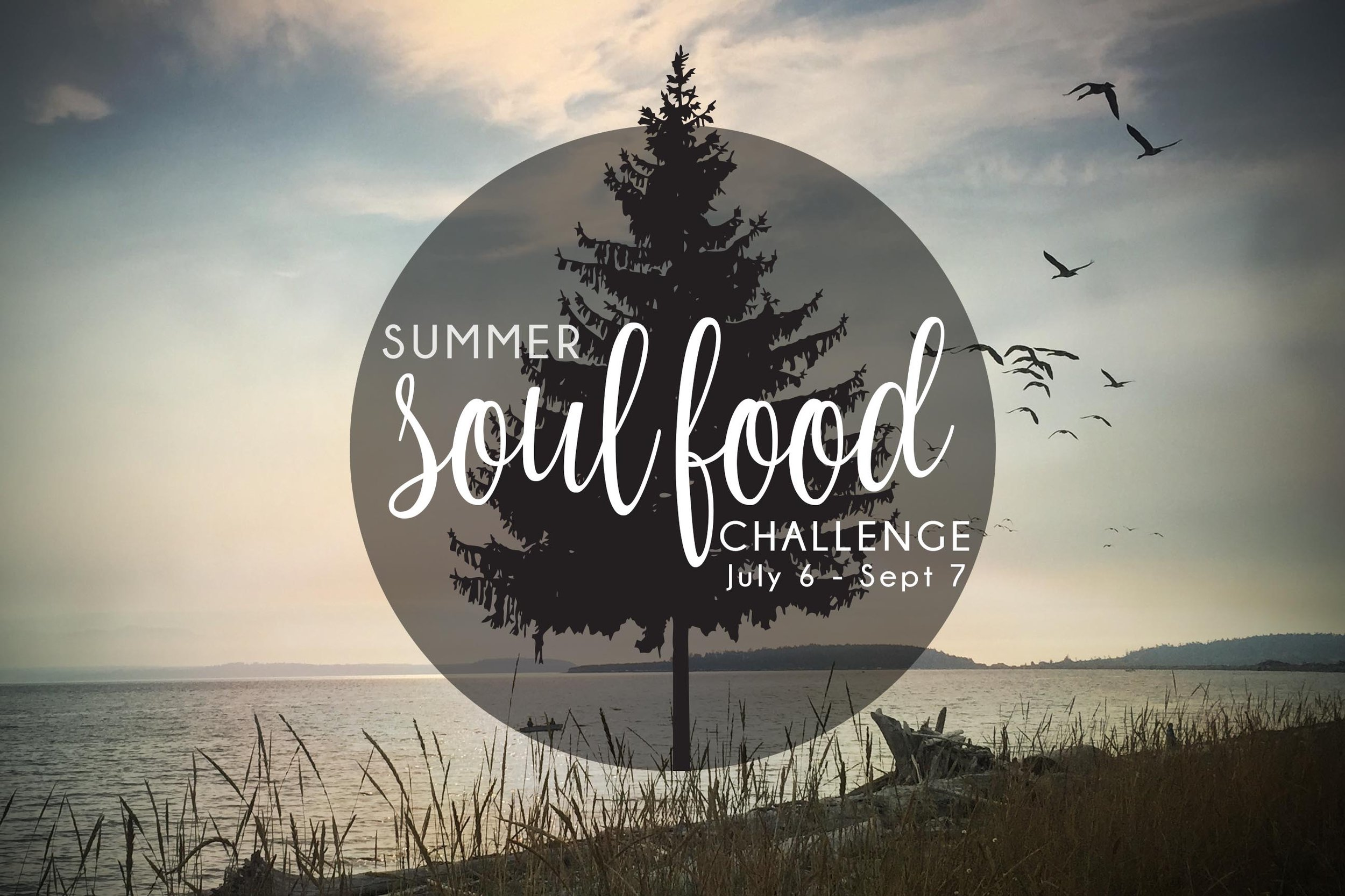 summer challenge 2019-1.jpeg