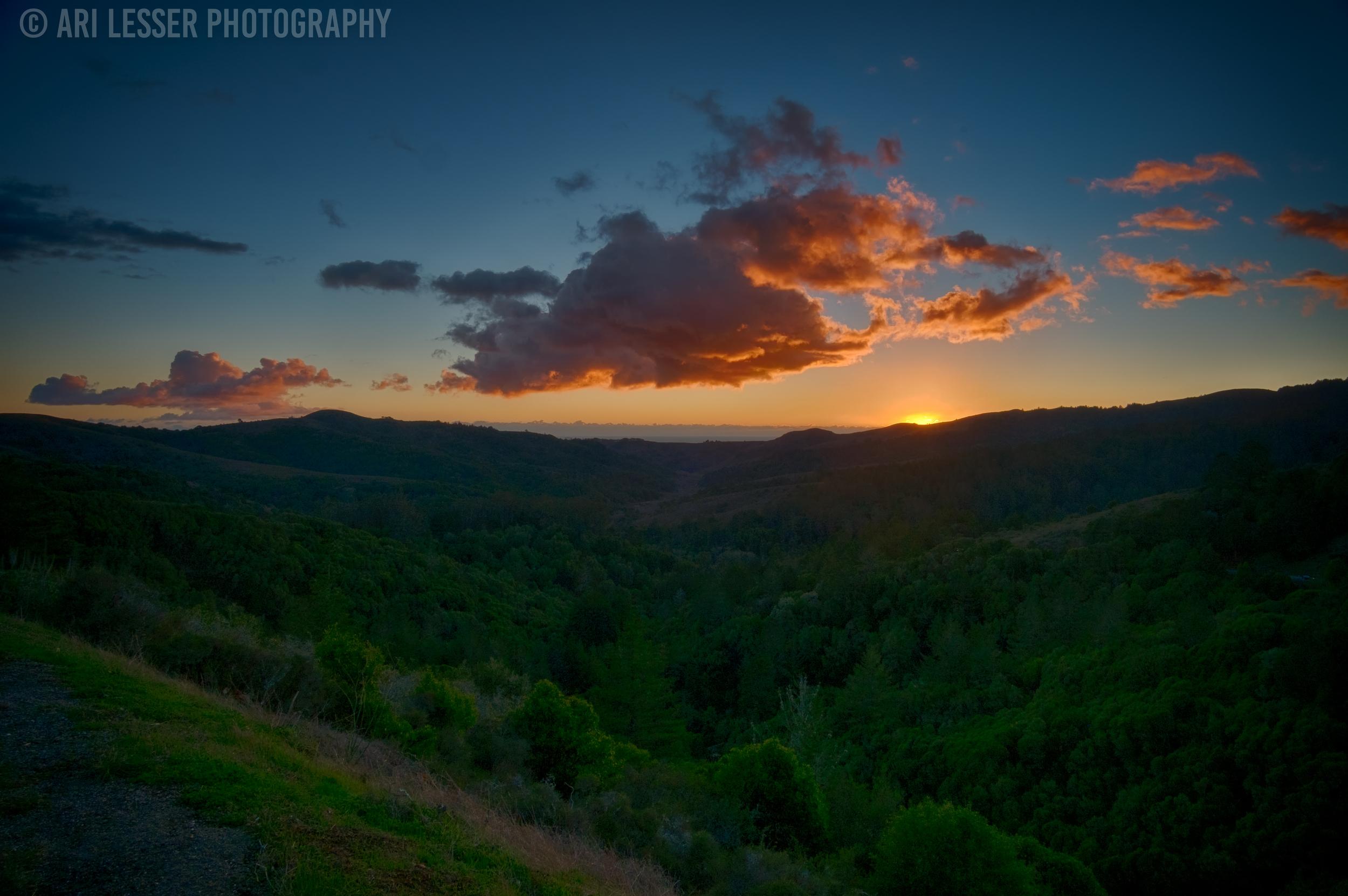 Sunset - Muir Woods