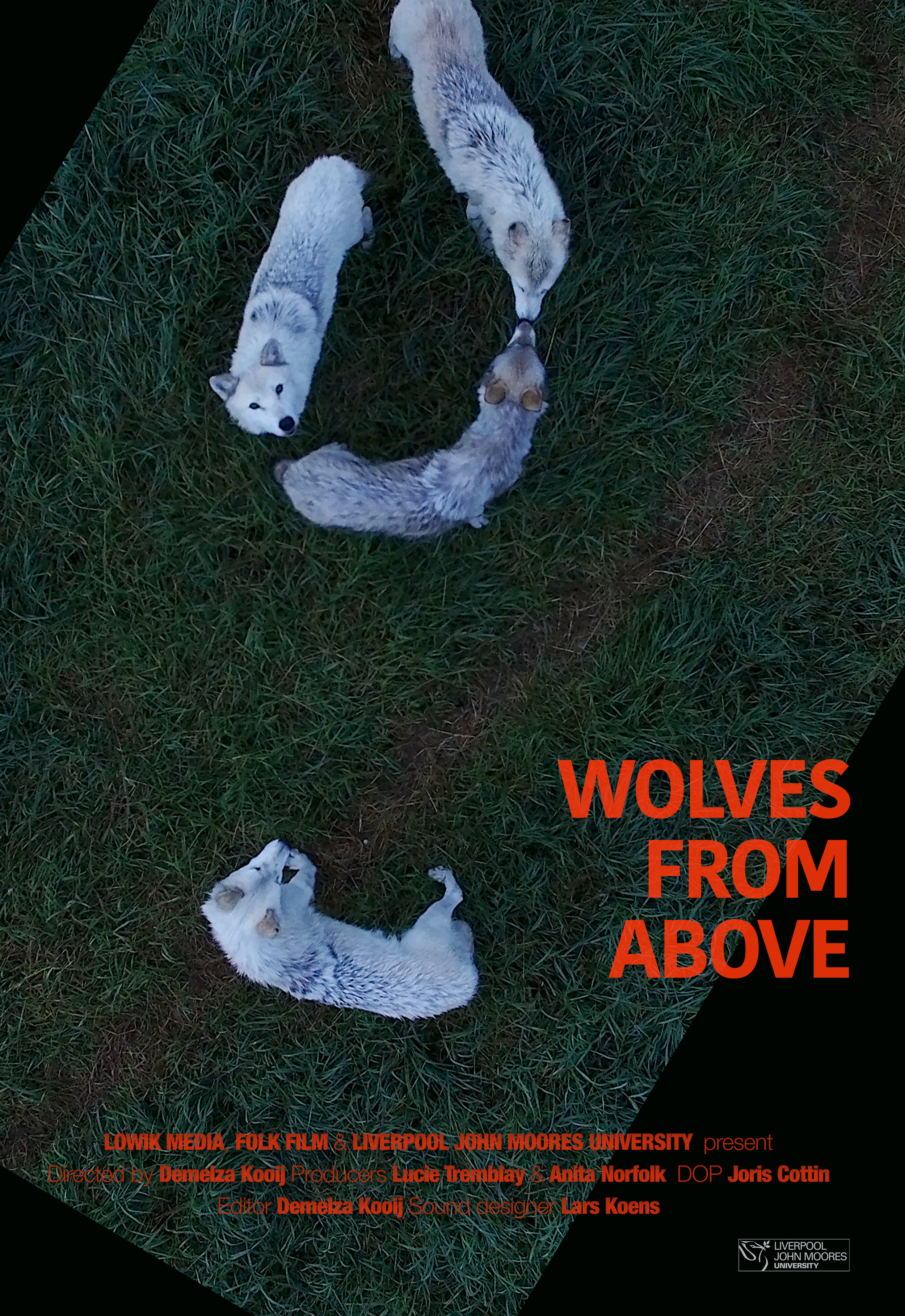 wolves-from-above_poster_kooij.jpg