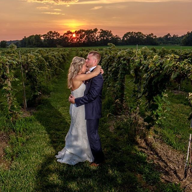 A romantic moment in the vineyard. #sunsetportrait #wedding #love #indianapoliswedding #indianapolisweddingphotographer #vineyardwedding #brideandgroom #lowlightphotography #fujifilmxt2 #godox