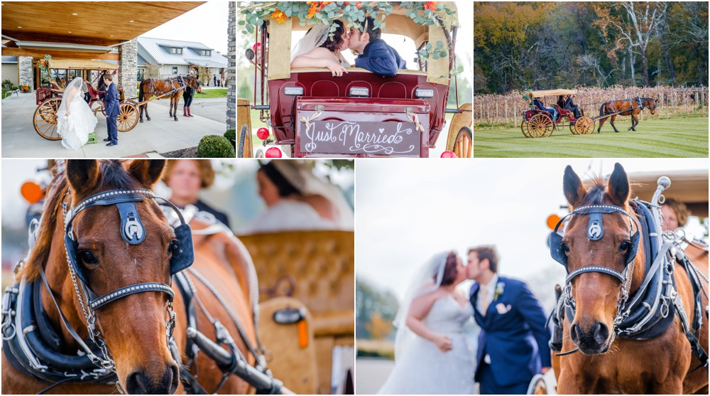 The-Sycamore-At-Mallow-Run-Wedding-Pictures_0011.jpg