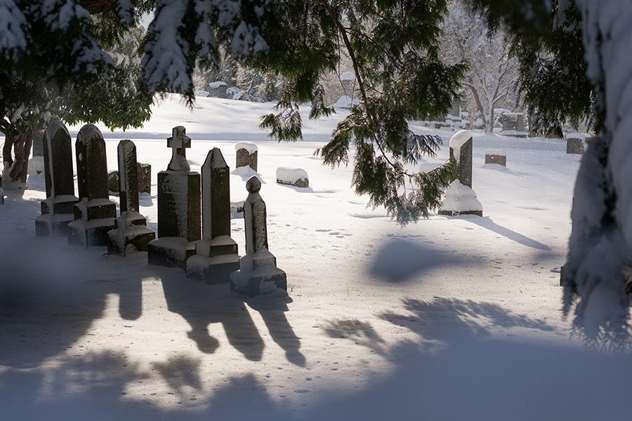Snowmaggedon (1 of 26).jpg