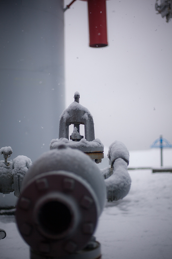 Snowmaggedon (7 of 26).jpg