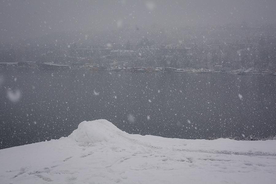 Snowmaggedon (8 of 26).jpg