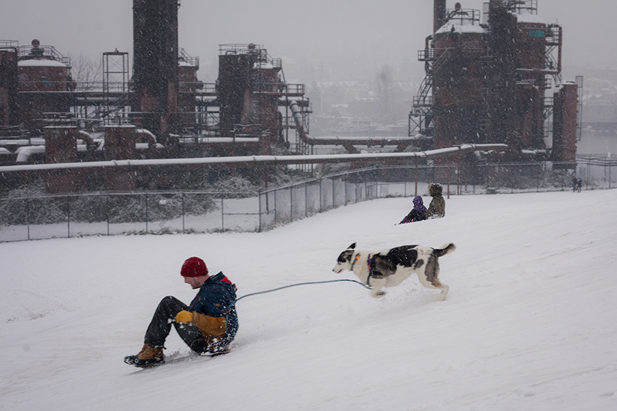 Snowmaggedon (10 of 26).jpg
