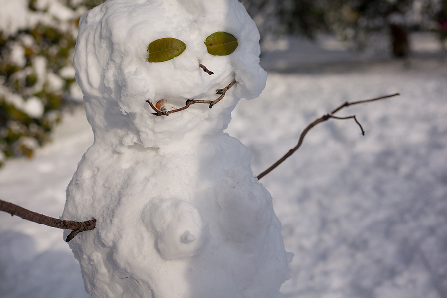 Snowmaggedon (18 of 26).jpg