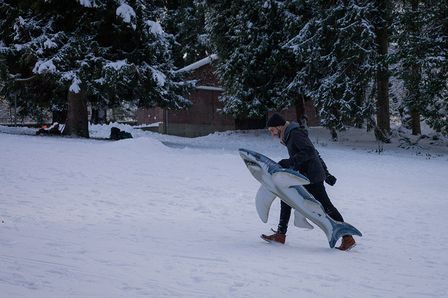 Snowmaggedon (20 of 26).jpg