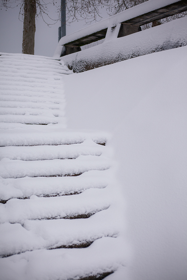 Snowmaggedon (26 of 26).jpg