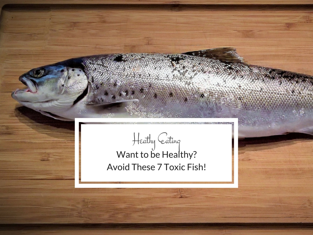This fish looks fresh and delicious but looks can be deceiving. It could contain high levels of mercury