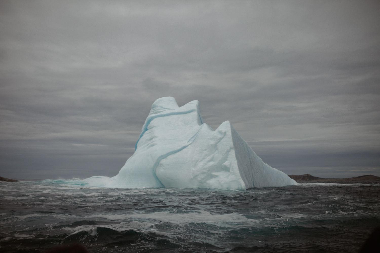 Best of New Foundland Labrador 03 Canada c3 adventure photographer aventure discovery découverte (48 of 61).jpg