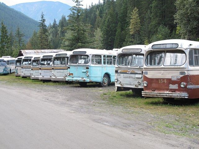 Flash Back Friday. A few old Buses that now live about 8 hours from Vancouver! Do you ever take public transit? . . . . . #FYI #FBF #Friday #FlashBacks #OldSchool #Buses #BCTransit #Transit #Vancouver #Canada #BritishColumbia #BC #FYI #Plan #Post #Communicate #Thrive #Marketing #Automotive #AutoMobile #PrettyCool #Instagood #Home