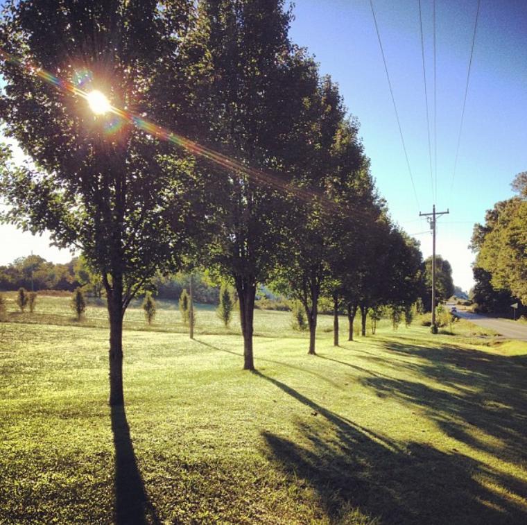A summer sunrise in Nobob, Kentucky.