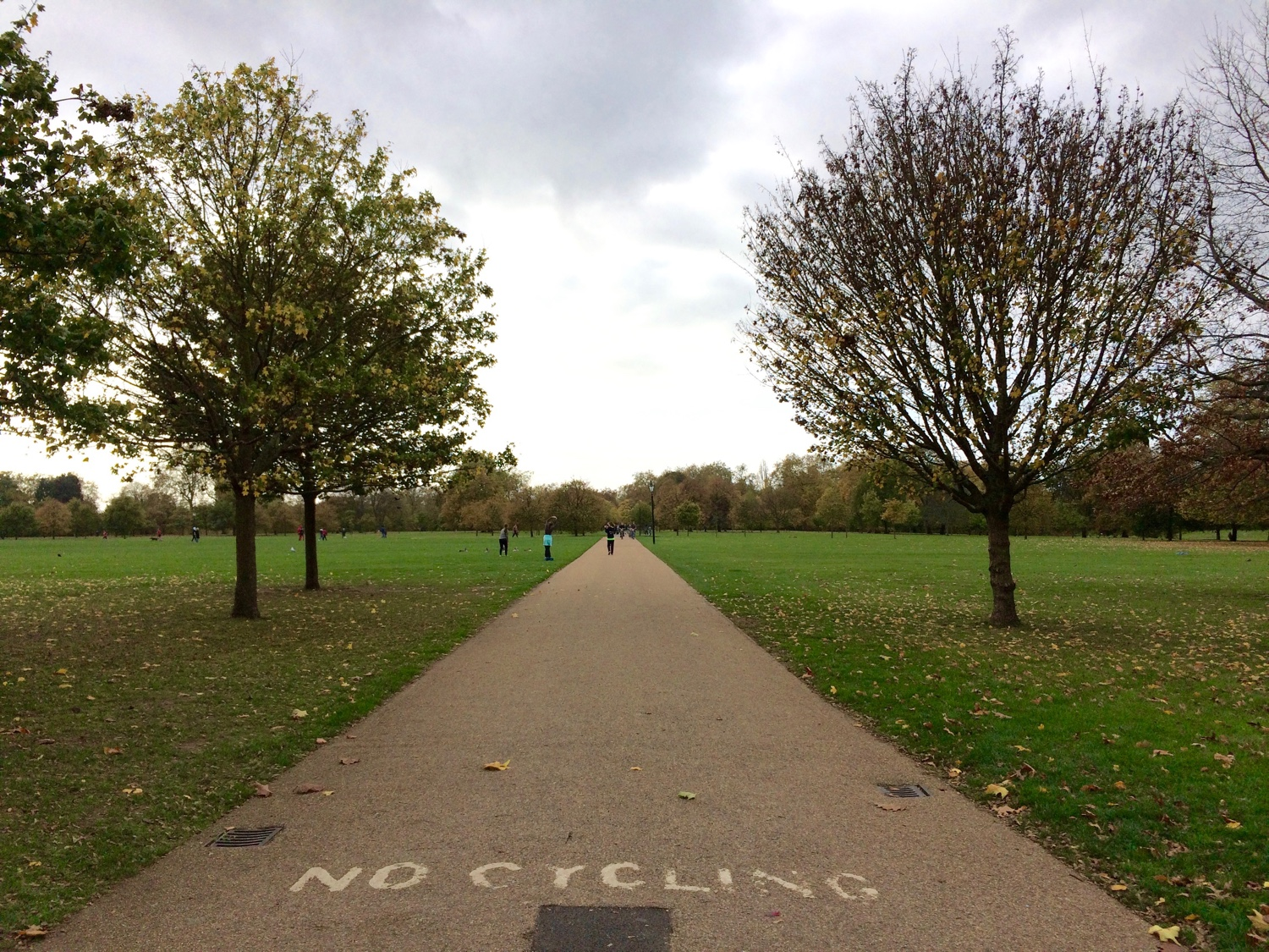 hyde_park_vegan_london.jpg