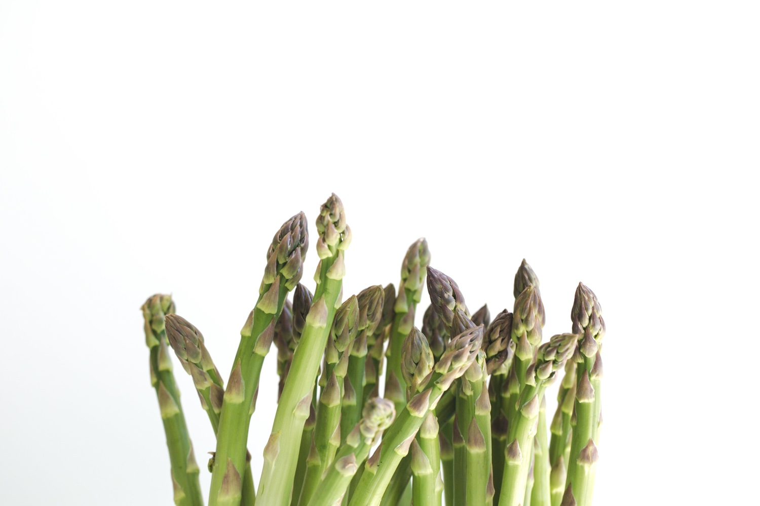 How to cook, store, pick and prepare asparagus, including simple vegan preparations, cool stories about cats and cooking and more | Brownble | Ode to asparagus