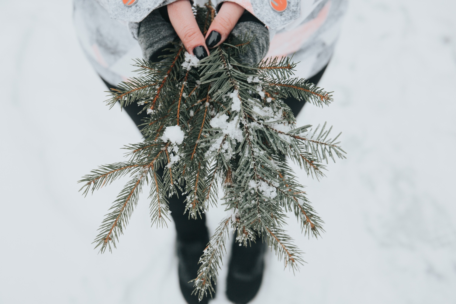 Tips for new vegans and seasoned vegans during the Holiday Season | Brownble