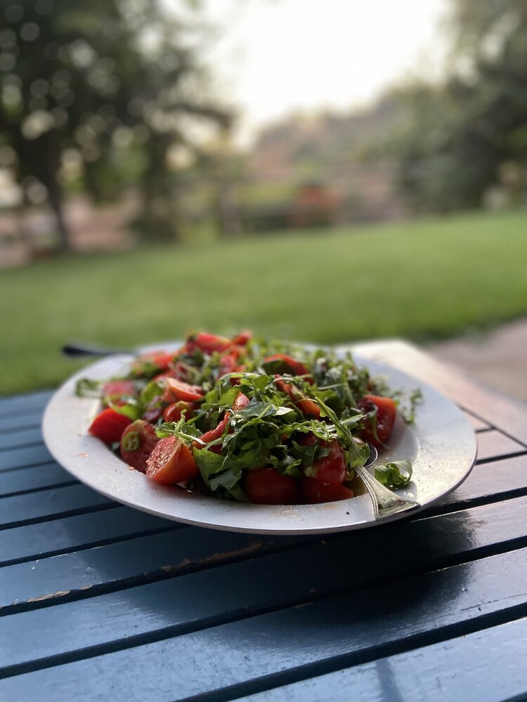 vegan_travel_brownble_connecting_with_the_land_in_rural_spain_vegan_meal_ideas_for_family_trips_with_omnivores_20.jpg