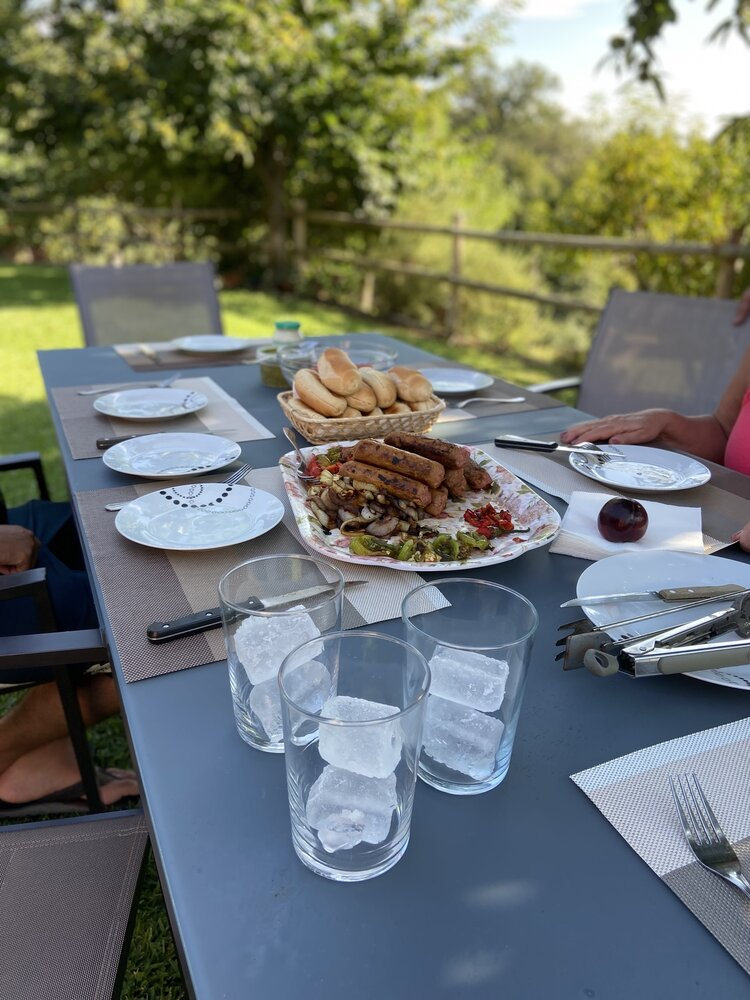 vegan_travel_brownble_connecting_with_the_land_in_rural_spain_vegan_meal_ideas_for_family_trips_with_omnivores_6.jpg