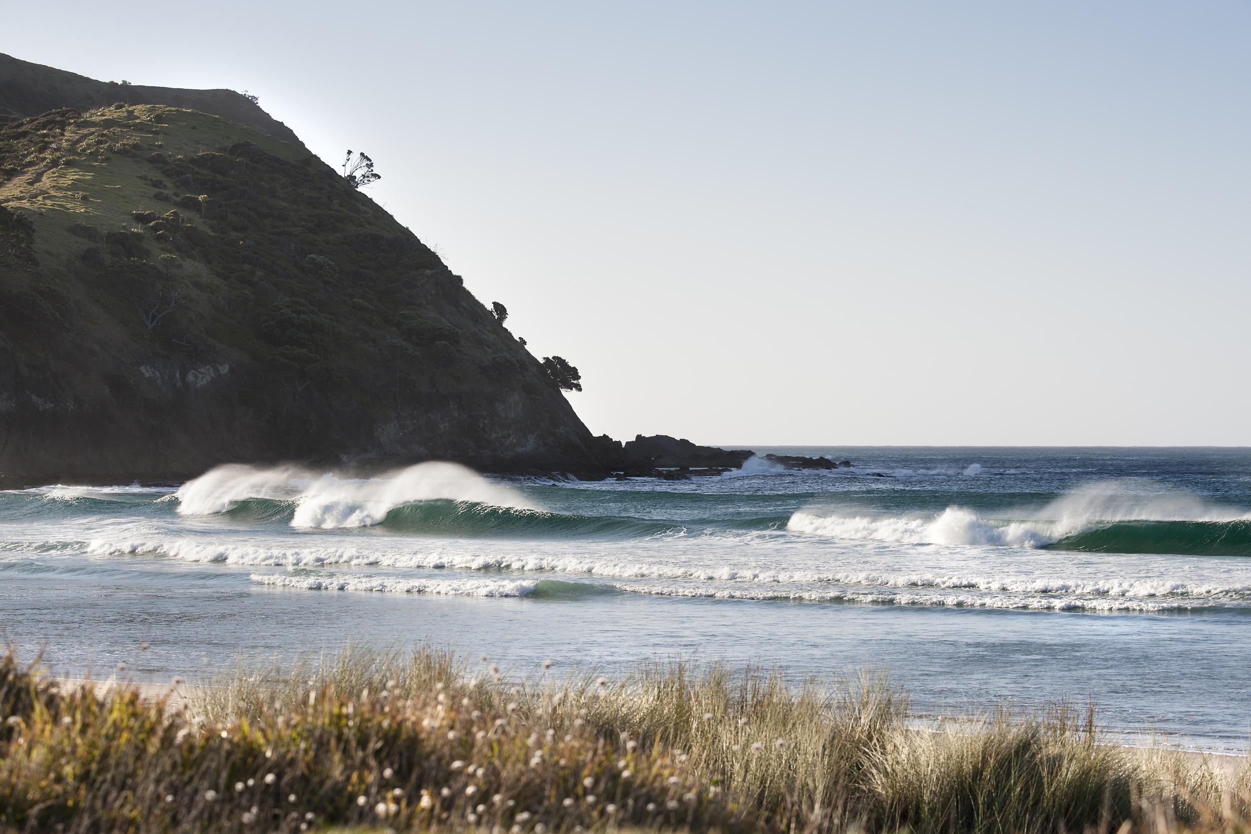 newzealand_nikon_1832_1.jpg