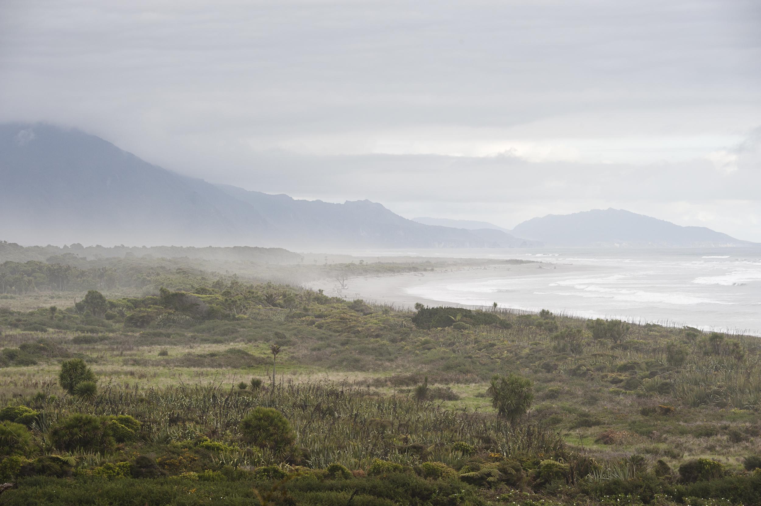 newzealand_nikon_0376_1.jpg