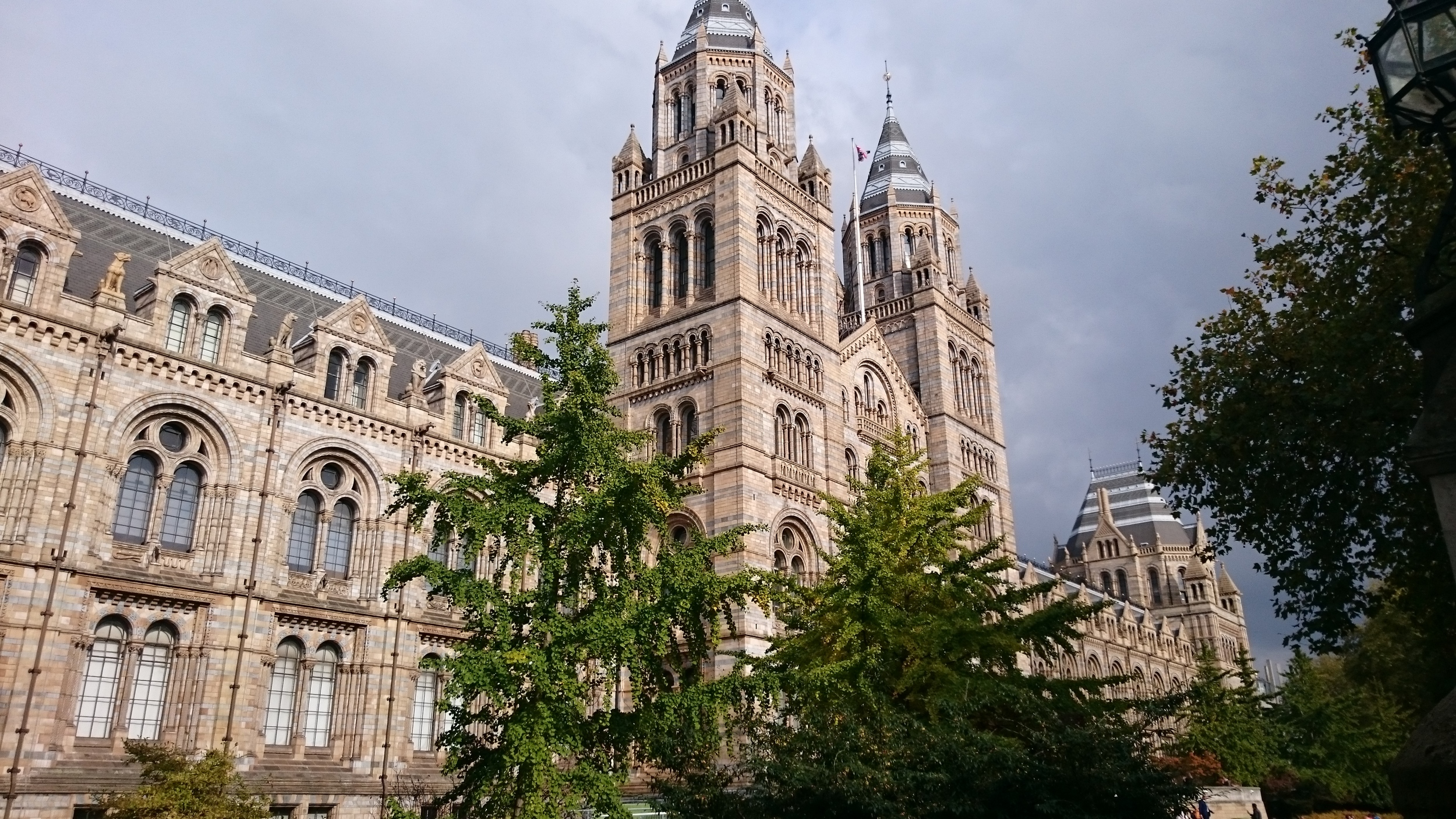 The National History Museum